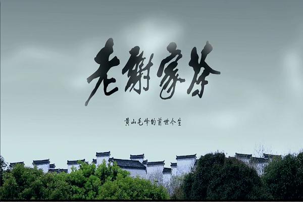 茶文化广告片