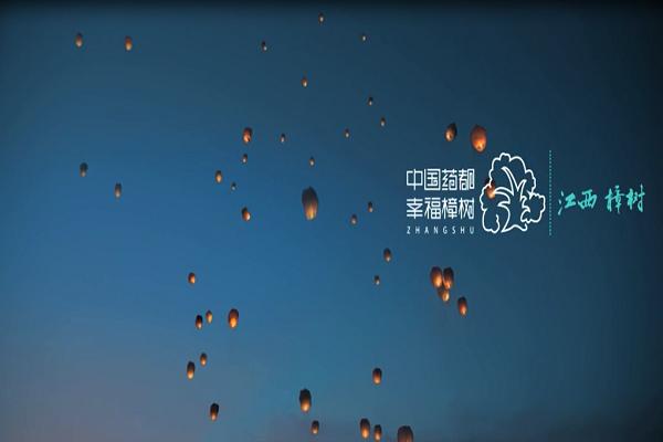 江西樟树宣传专题片